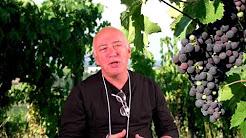 Bruce L. Video 2